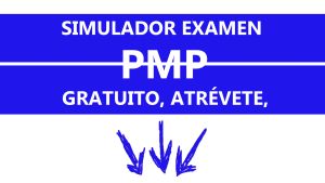 Simulador Gratuito PMP